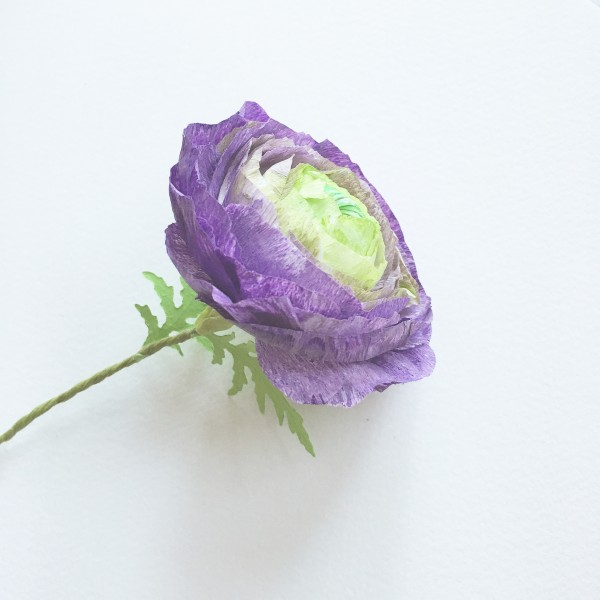 ranunculus bookmark