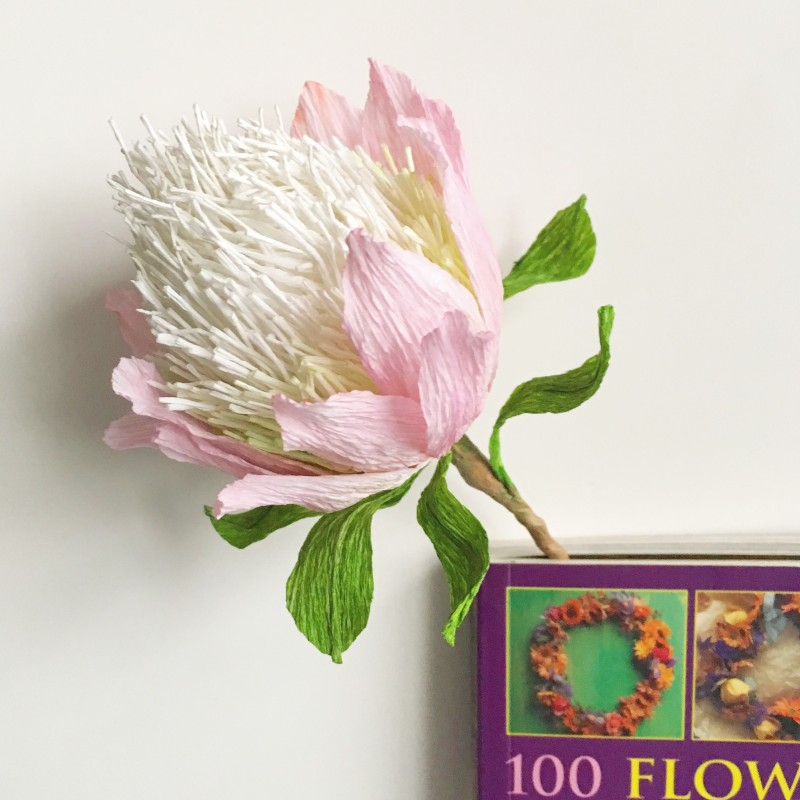 Flower bookmark collection for flower lovers – Protea