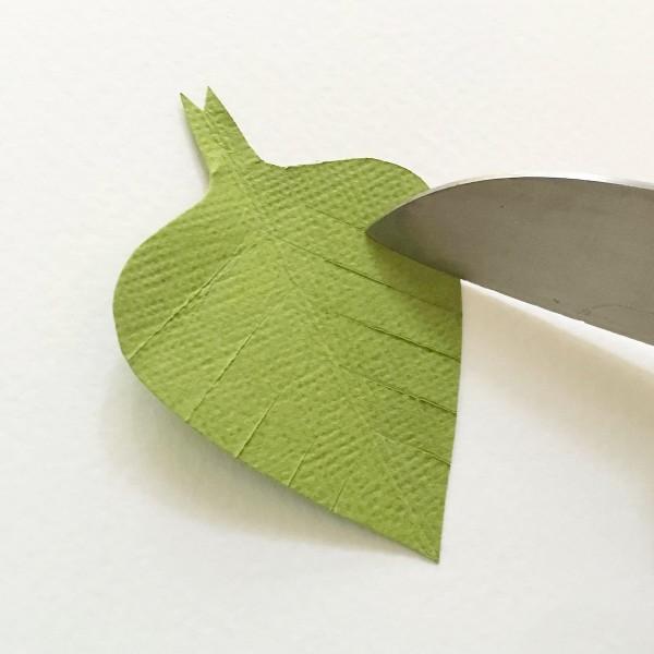 bougainvillea green leaf