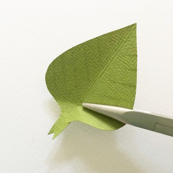 shaping green paper leaf