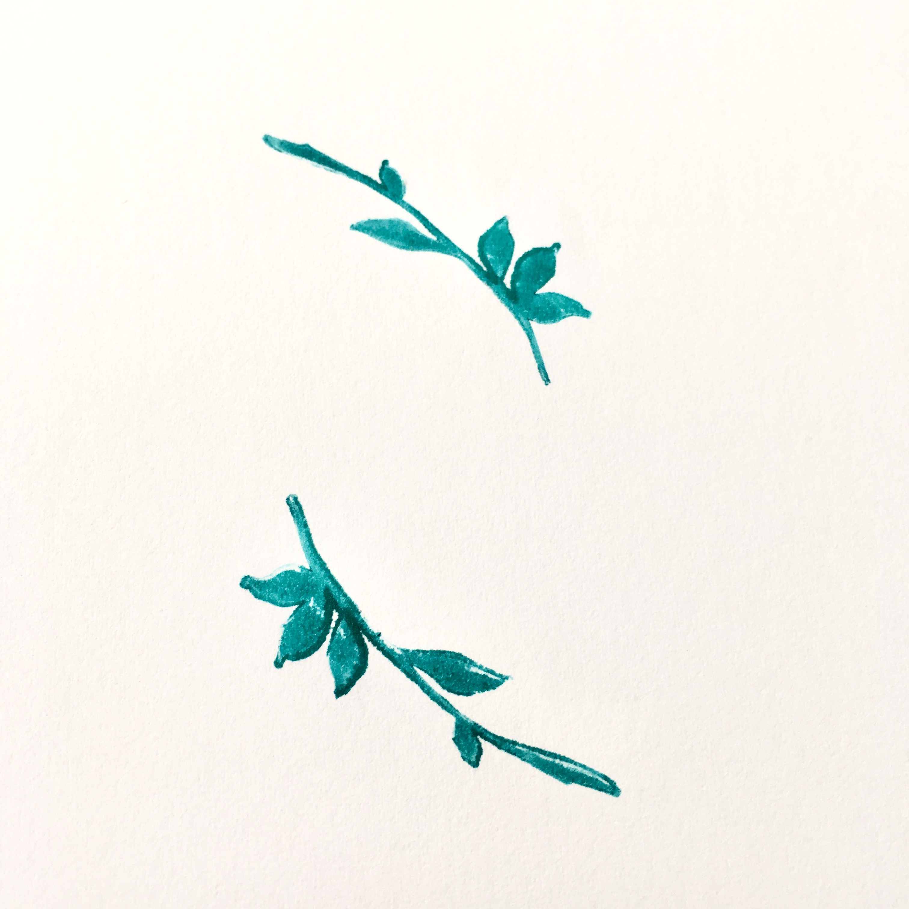 turquoise blue leaf stamp on a white office paper sheet