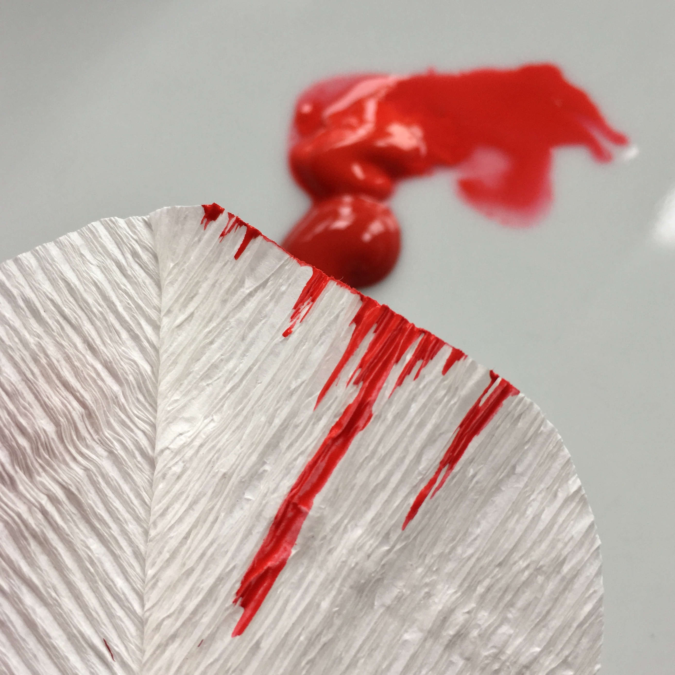 painting red lines in the white tulip petal