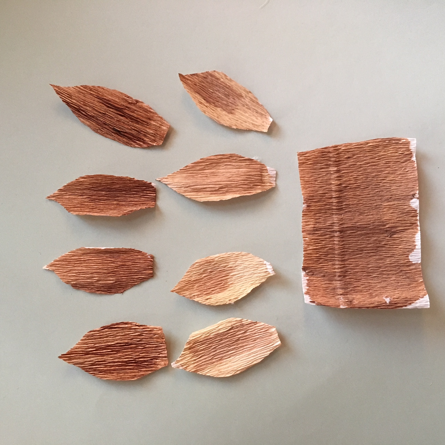 crepe paper, coloured in brown with acrylic paint