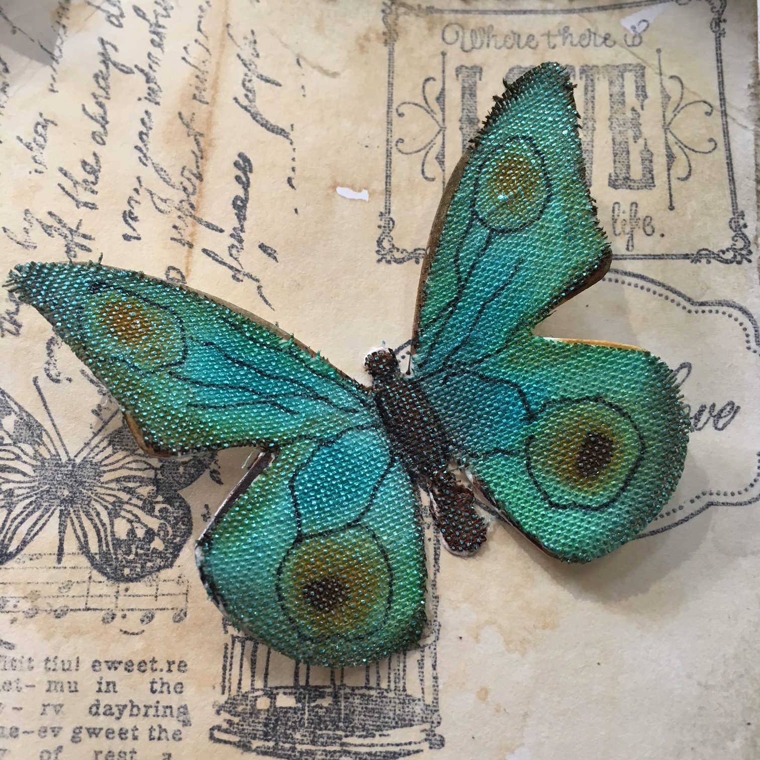 silk butterfly, coloured with brown, blue and black