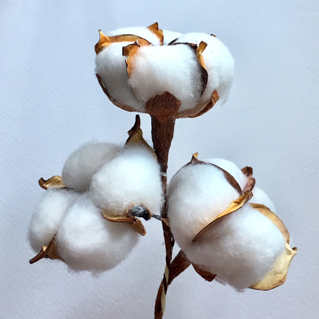 3 heads of handmade cotton flowers