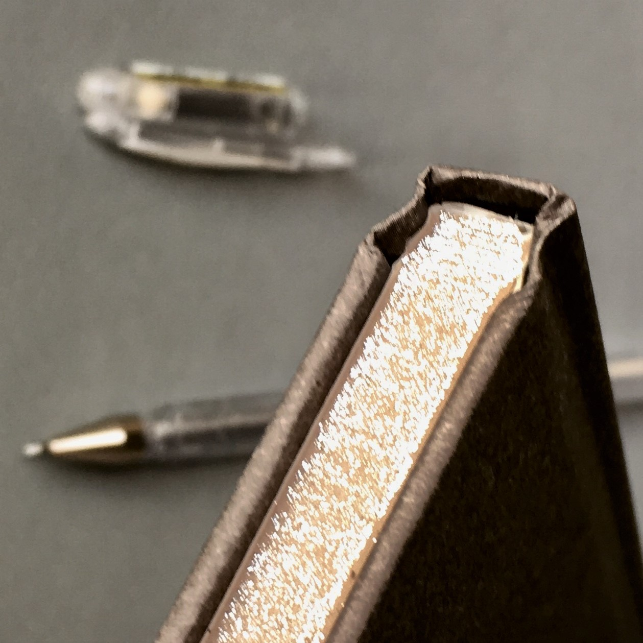 silver glitter edges of the pages