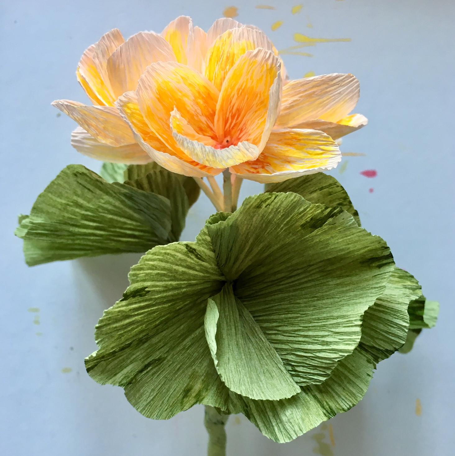 finished paper pelargonium