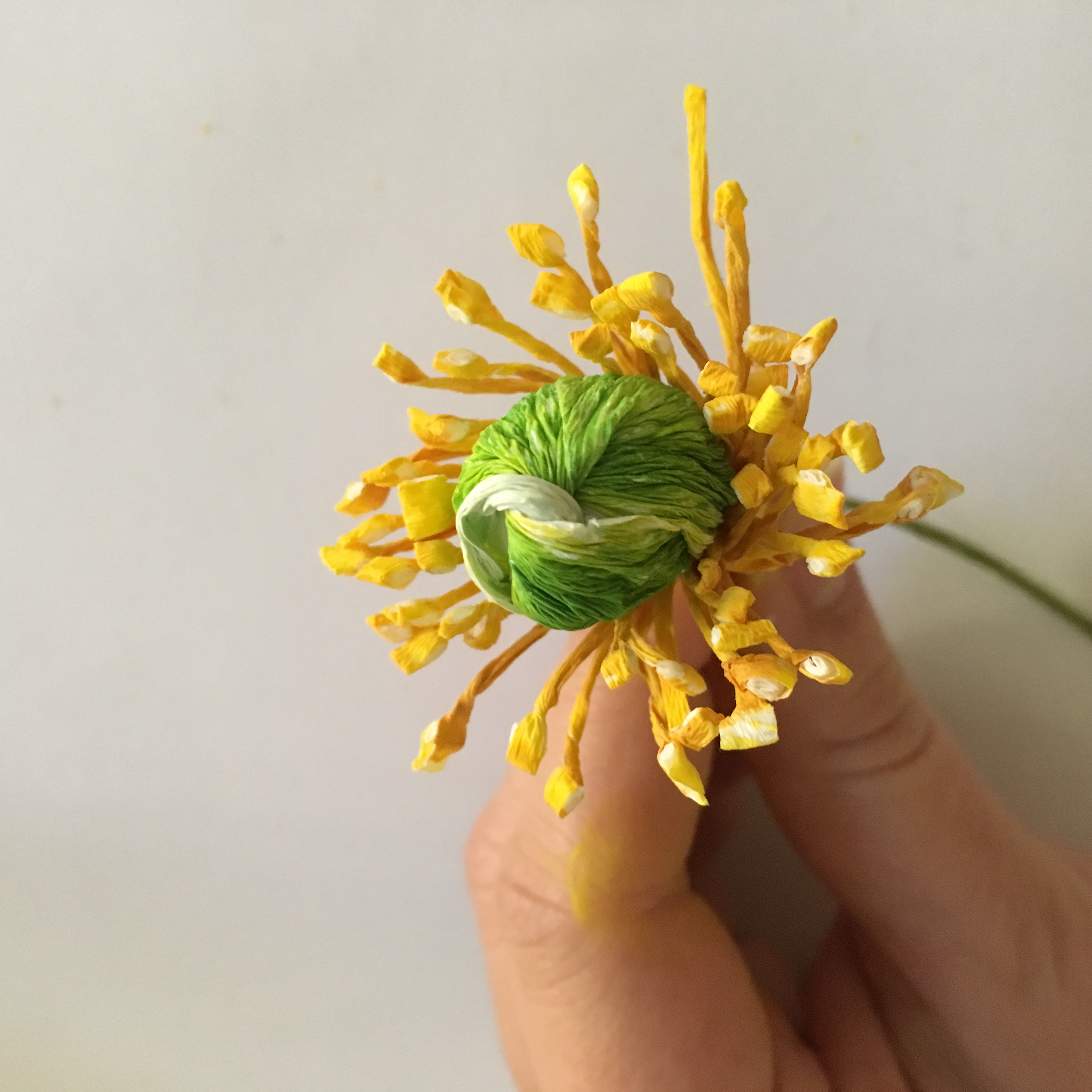 bulb and stamens