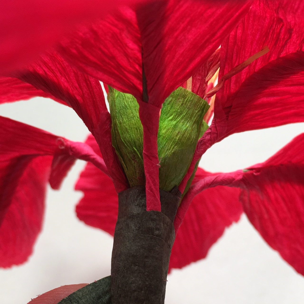 making crepe paper Poinsettia for Christmas gift - making the stem and gluing the leaves