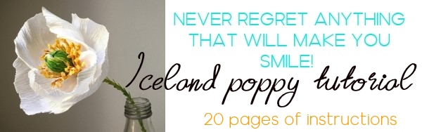 20 pages step by step Iceland poppy tutorial