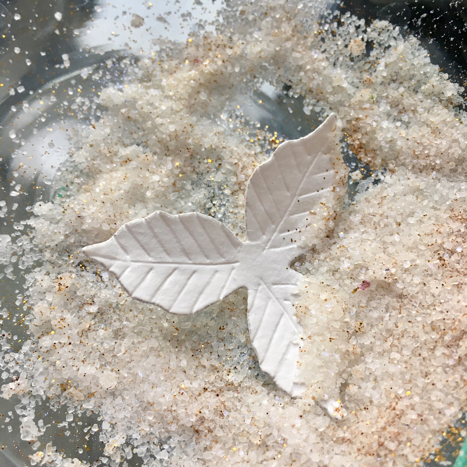 """""""gluing salt on the petals to look frosted"""