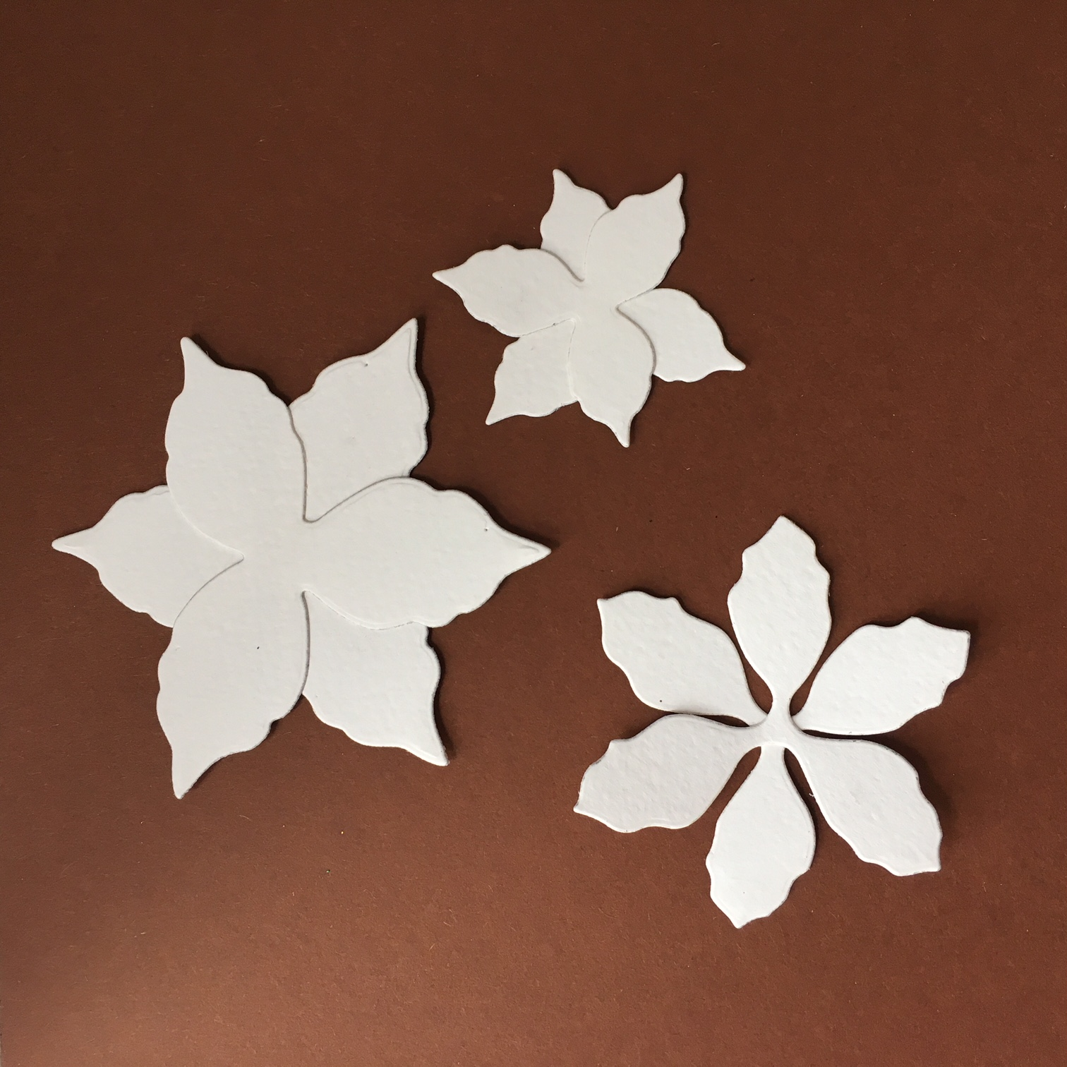 Poinsettia shaped paper flowers