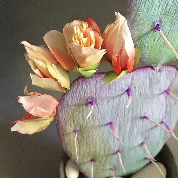 flowering paper cactus