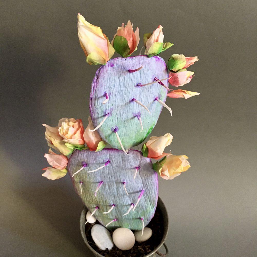 Flowering crepe paper cactus – Part I