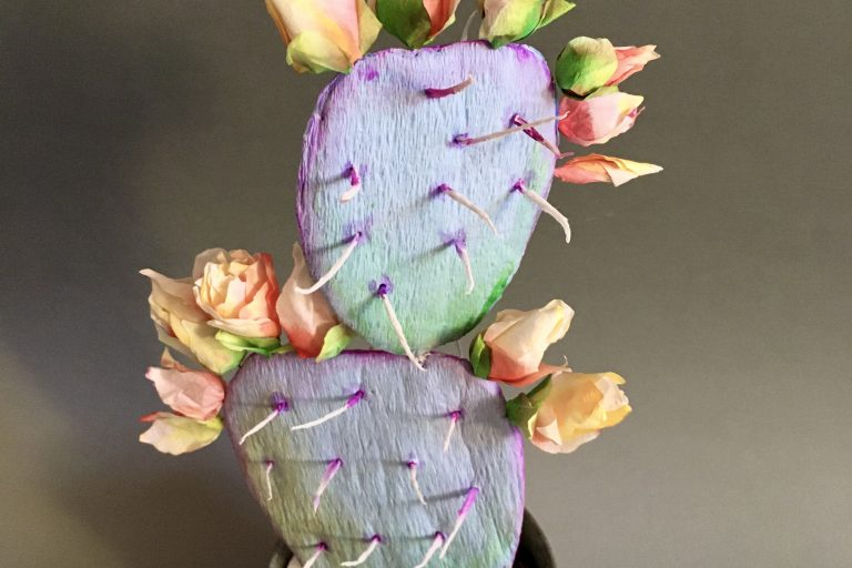 Flowering crepe paper cactus – Part I
