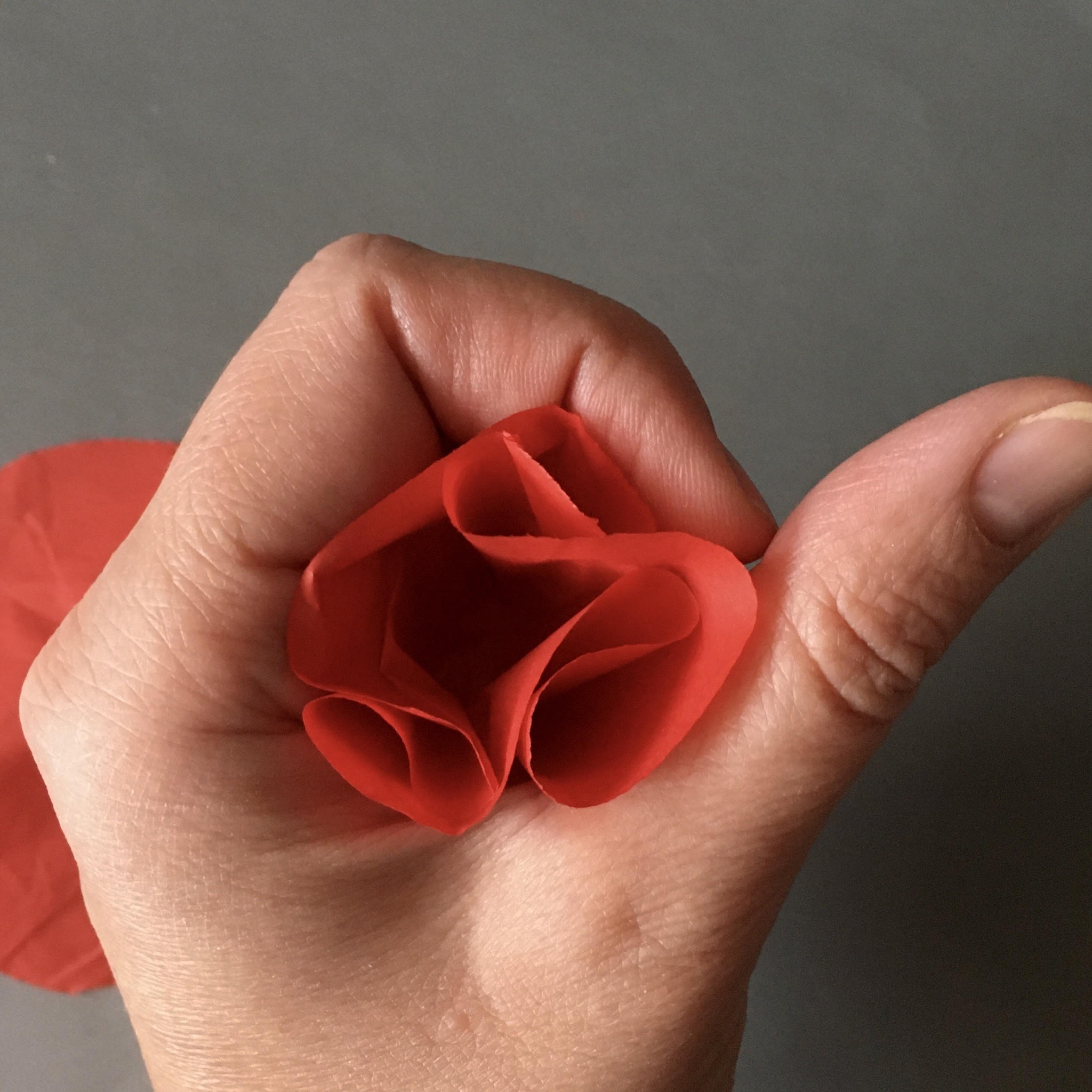 how to make ;poppy petals from tissue paper