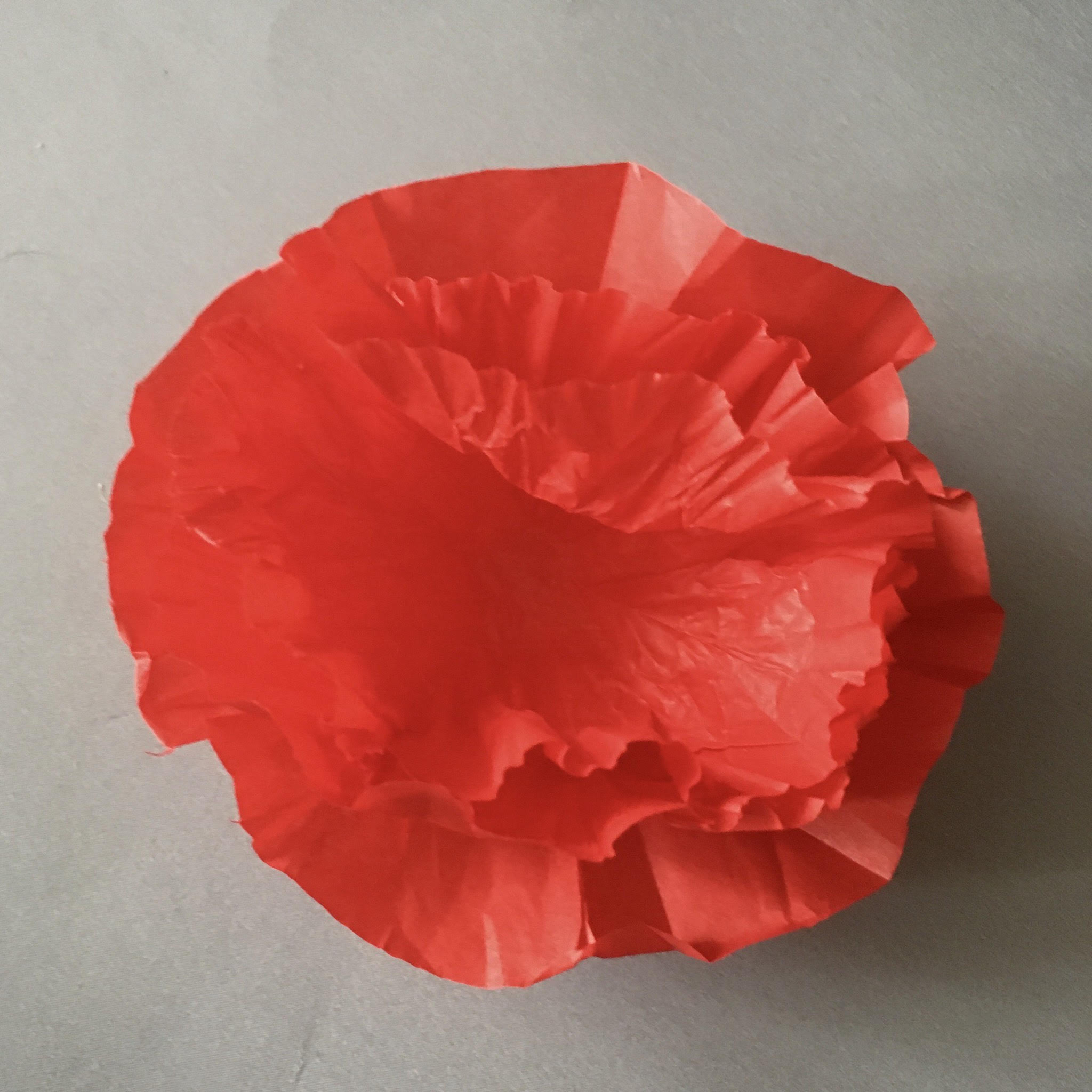 ANZAC tissue paper poppies - use 3 petal layers for each flower