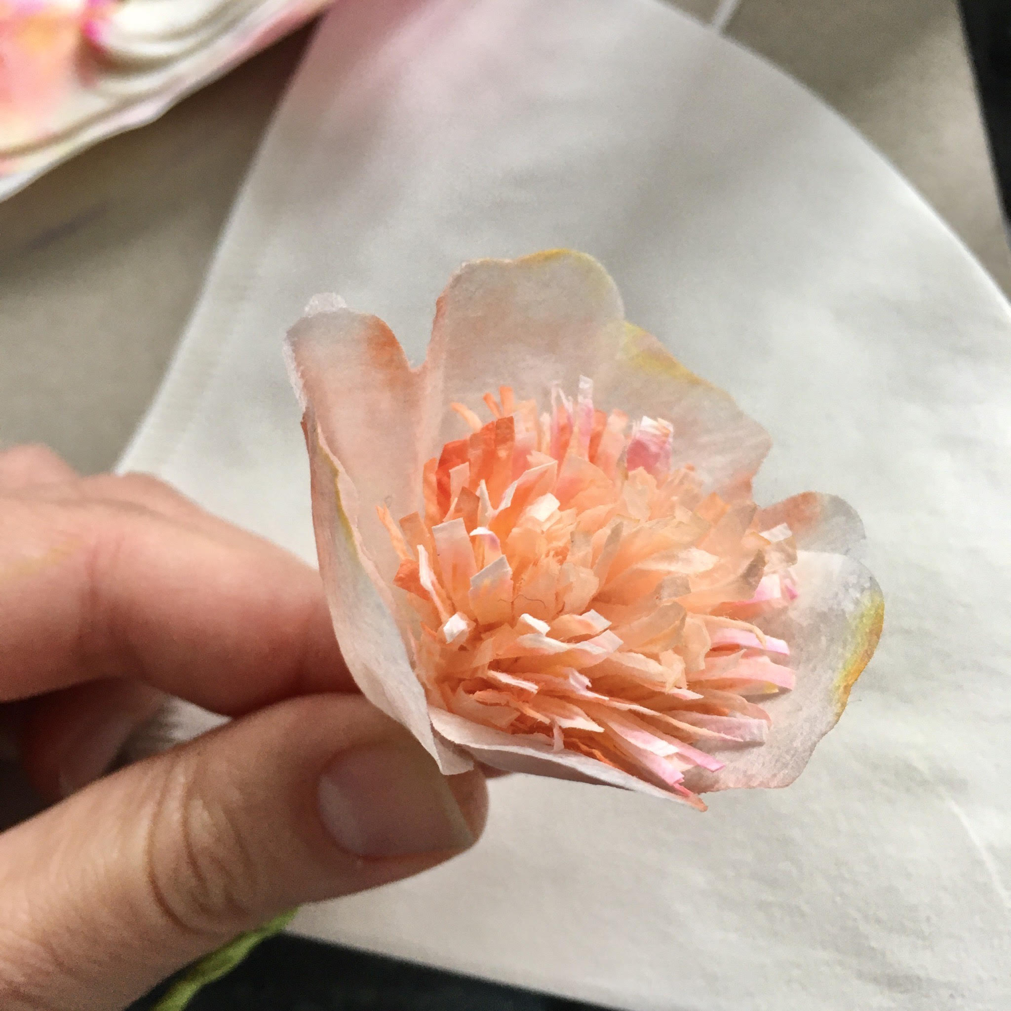 making coffee filter flower