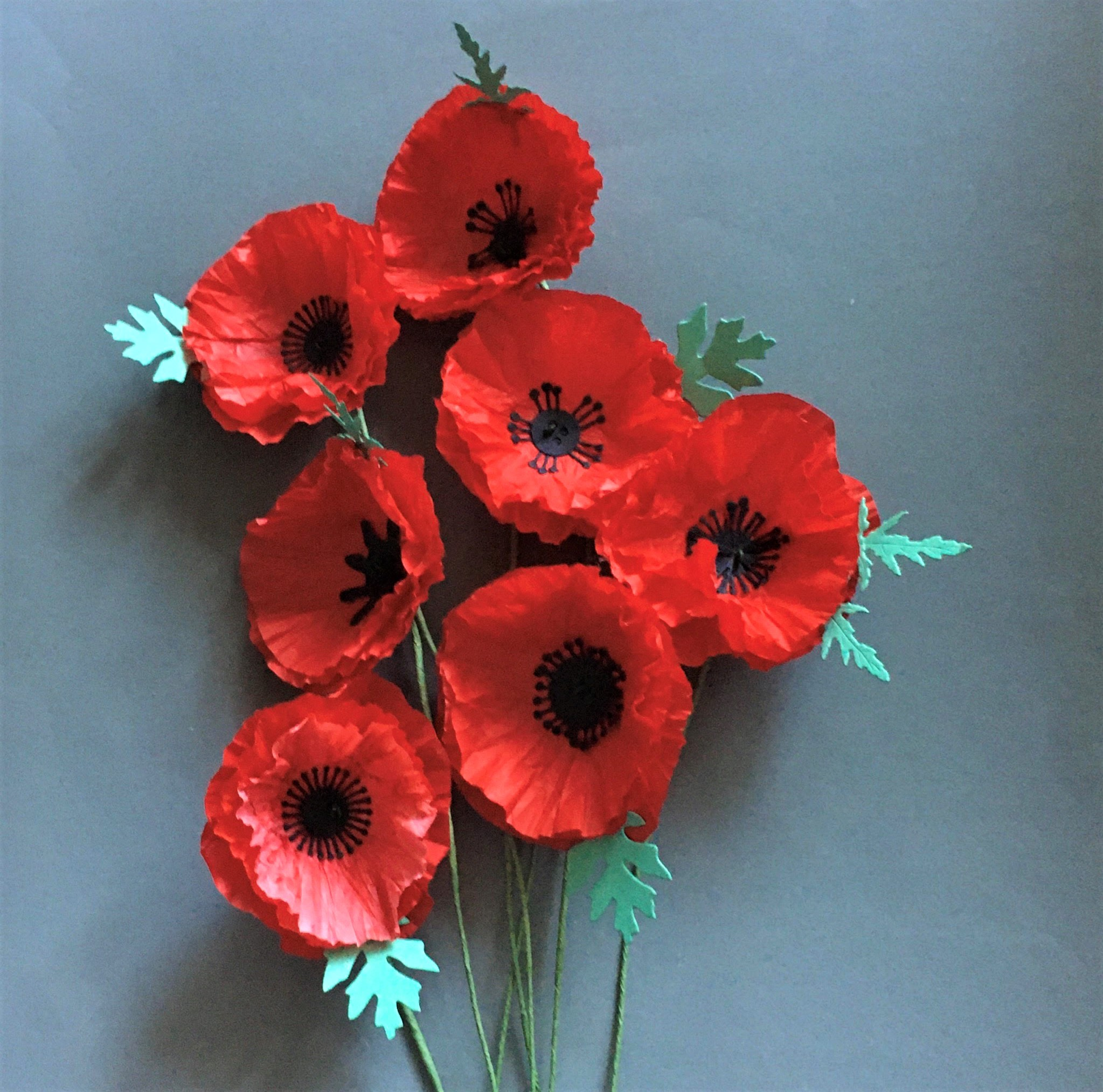 how to DIY ANZAC day tissue paper poppy flowers