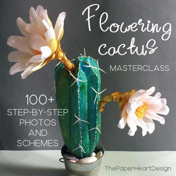 Flowering cactus tutorial