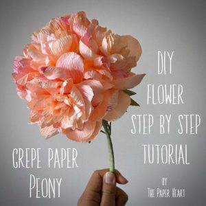 DIY crepe paper Peony flower step by step tutorial