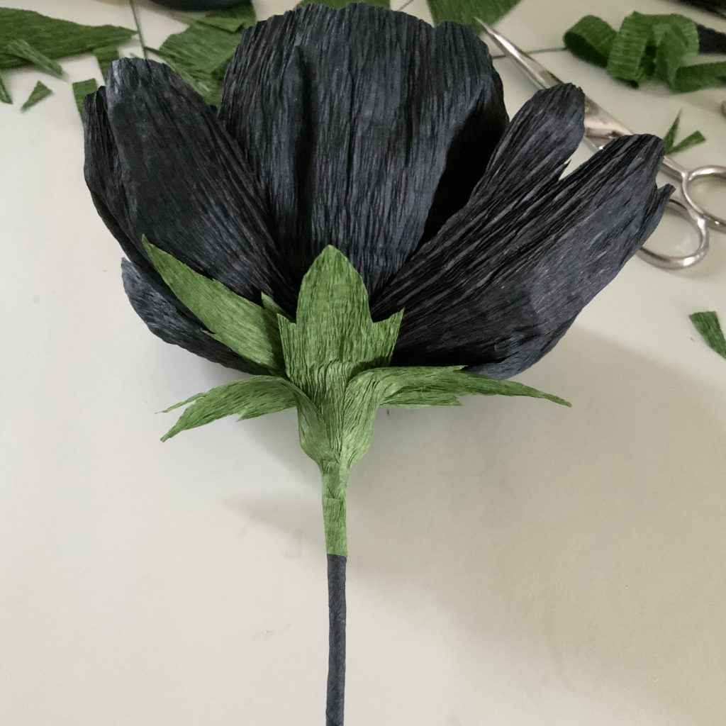 making a black Peony crepe paper flower for home decoration - the leaves are fixed under the petals