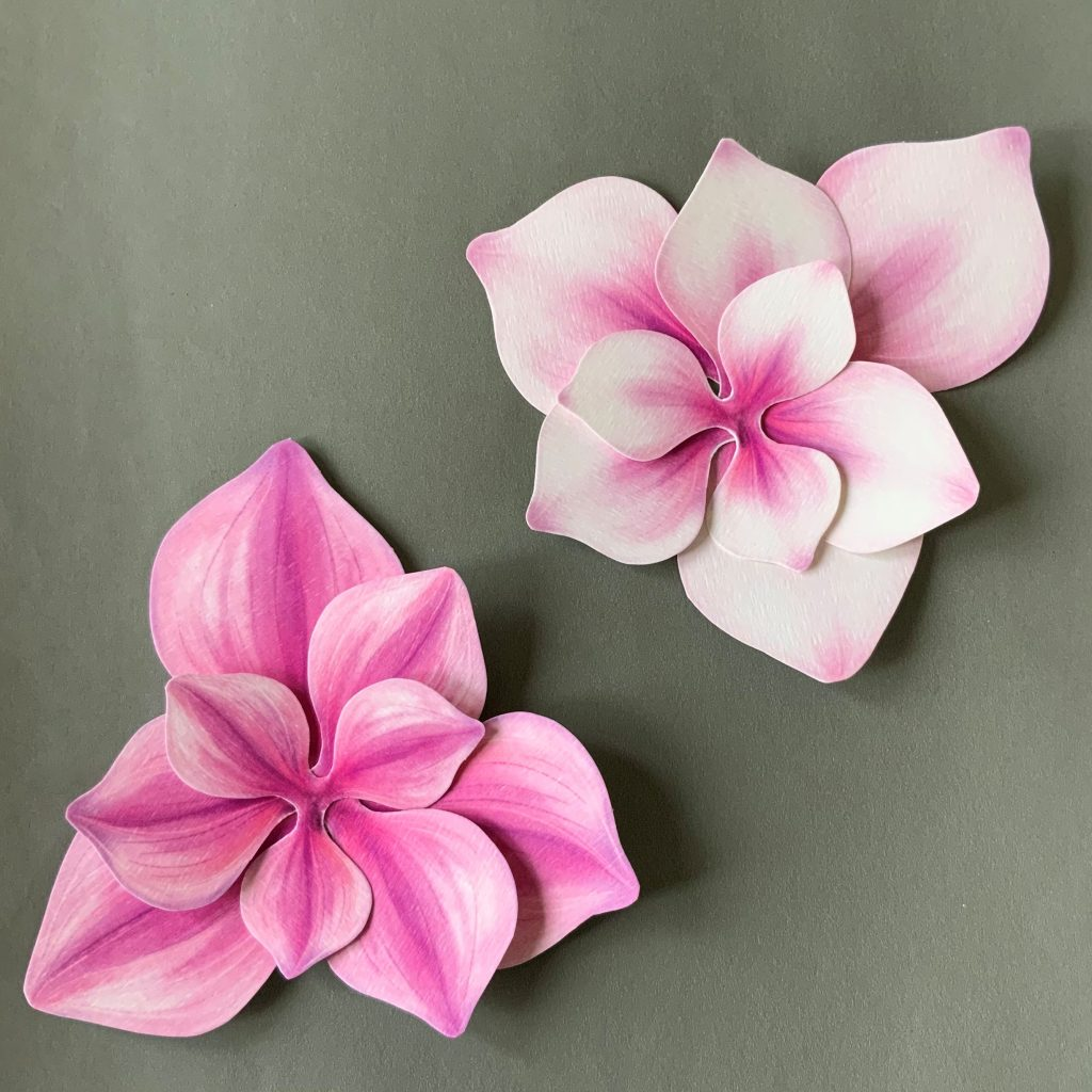 paper magnolia craft project