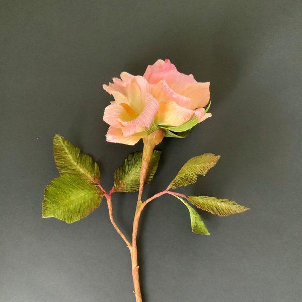 Romantic Autumn rose