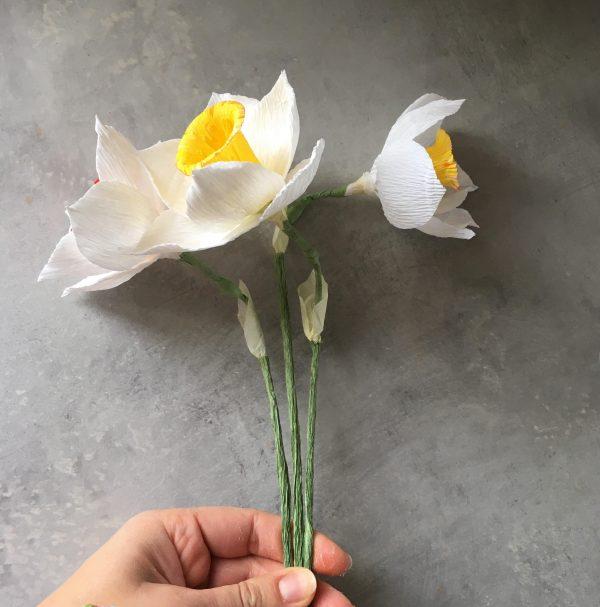 how to make crepe paper Daffodil