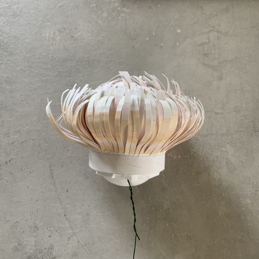 """how to DIY watercolour paper Protea flower - glue all the stamens slightly lower down on the egg in order to create this """"hat""""-looking shape"""