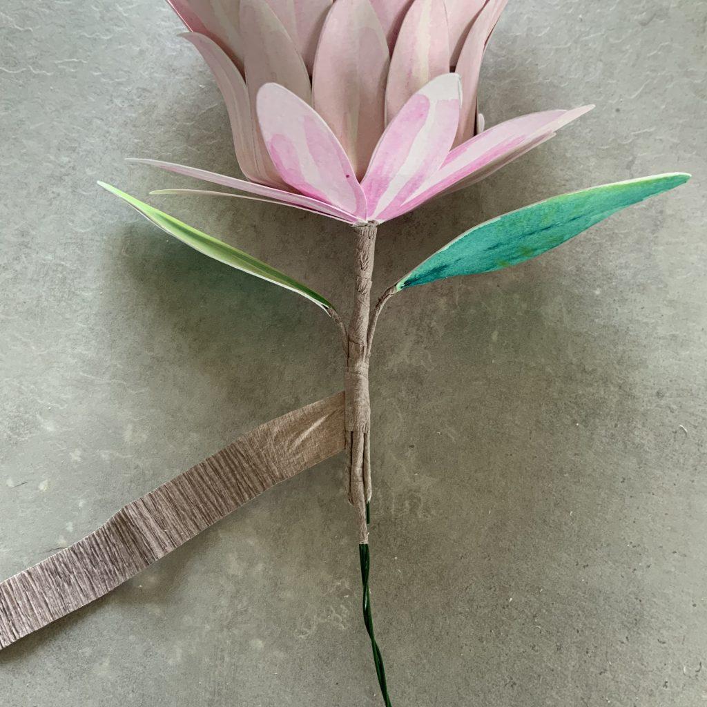 DIY watercolour paper Protea flower