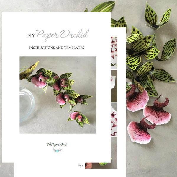orchid printable templates