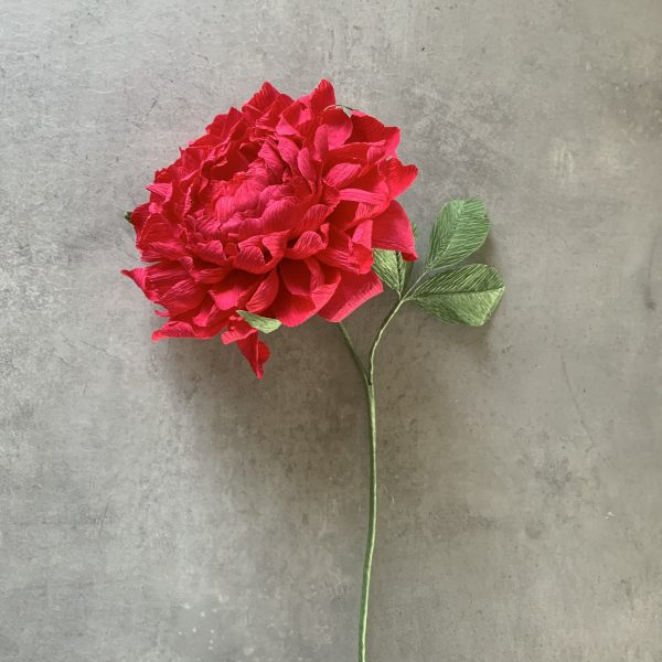 crepe paper Peony - scalable construction