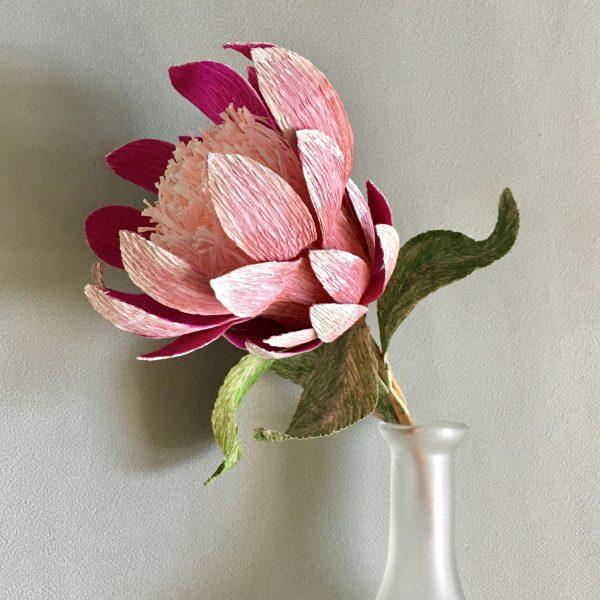 crepe paper Protea DIY