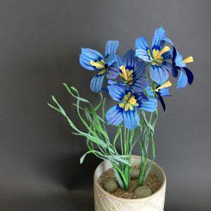 DIY paper Blue-eyed grass flower