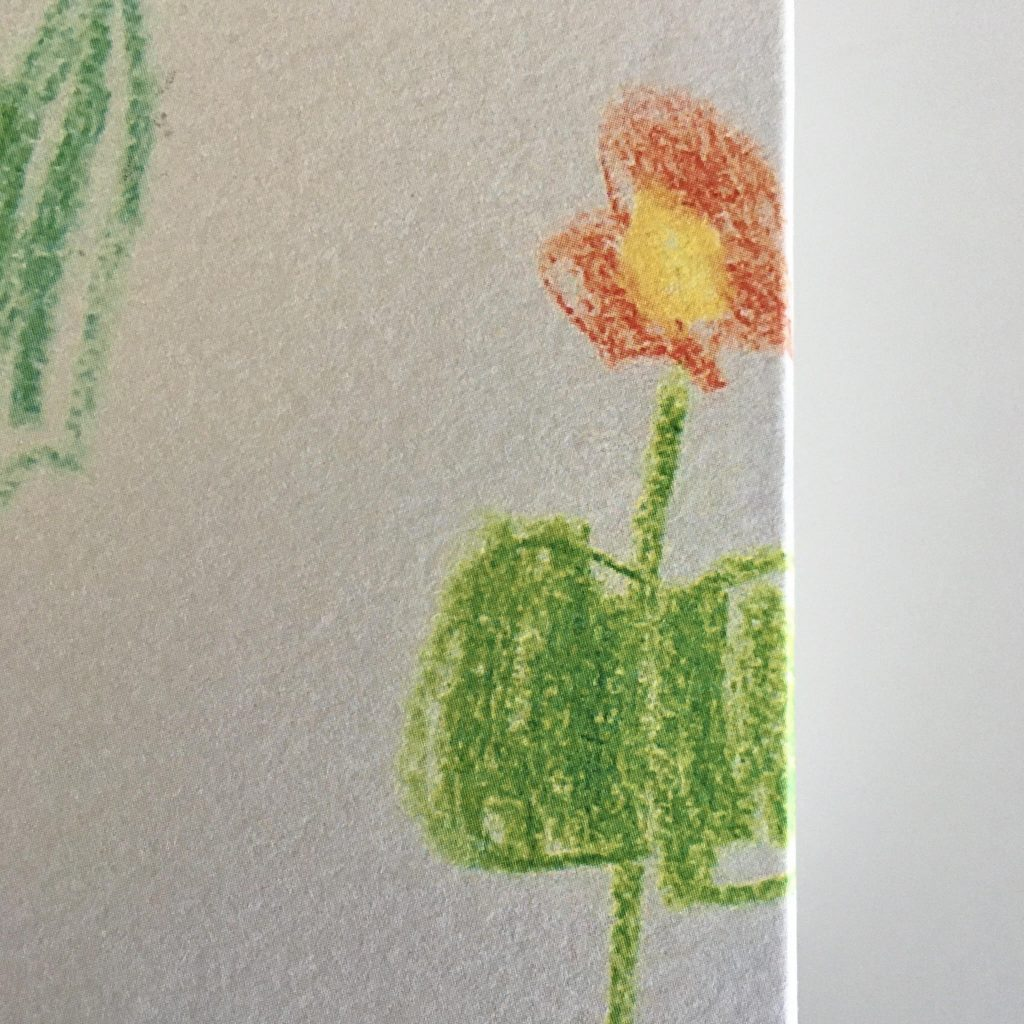 kid's drawing of a flower with yellow stamens and orange petals on white background